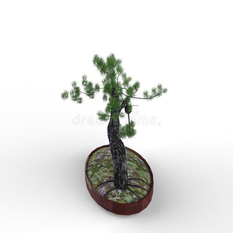 3d que rinde un bonsai creado usando una herramienta de la licuadora libre illustration
