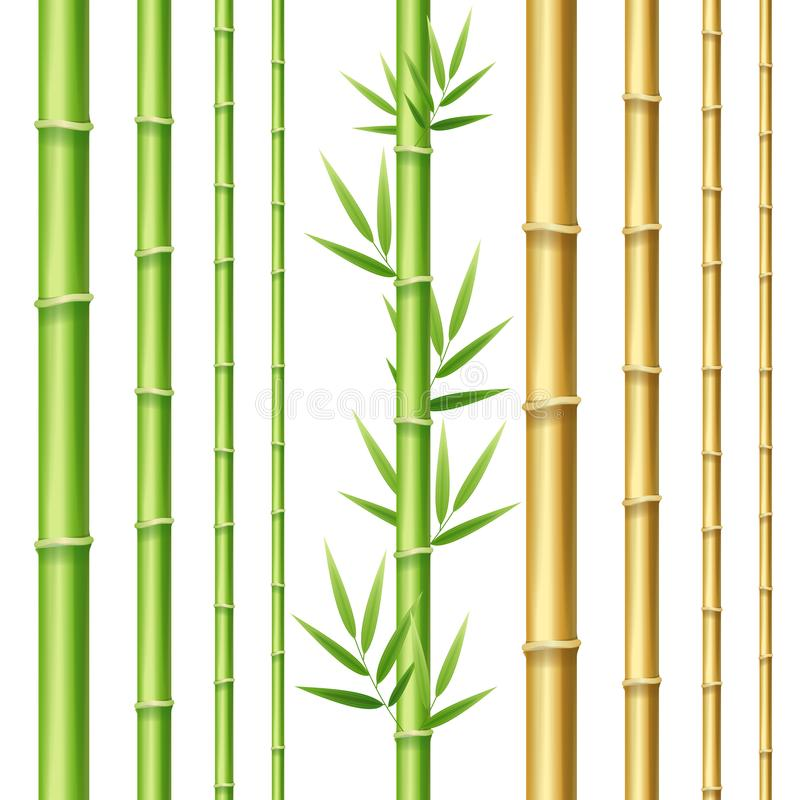 3d réaliste a détaillé des pousses de bambou réglées Vecteur illustration libre de droits
