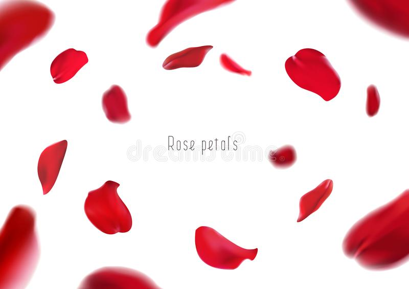 3d realistic isolated red rose petals circling in a whirlwind. Vortex. Ð¡elebratory background royalty free illustration