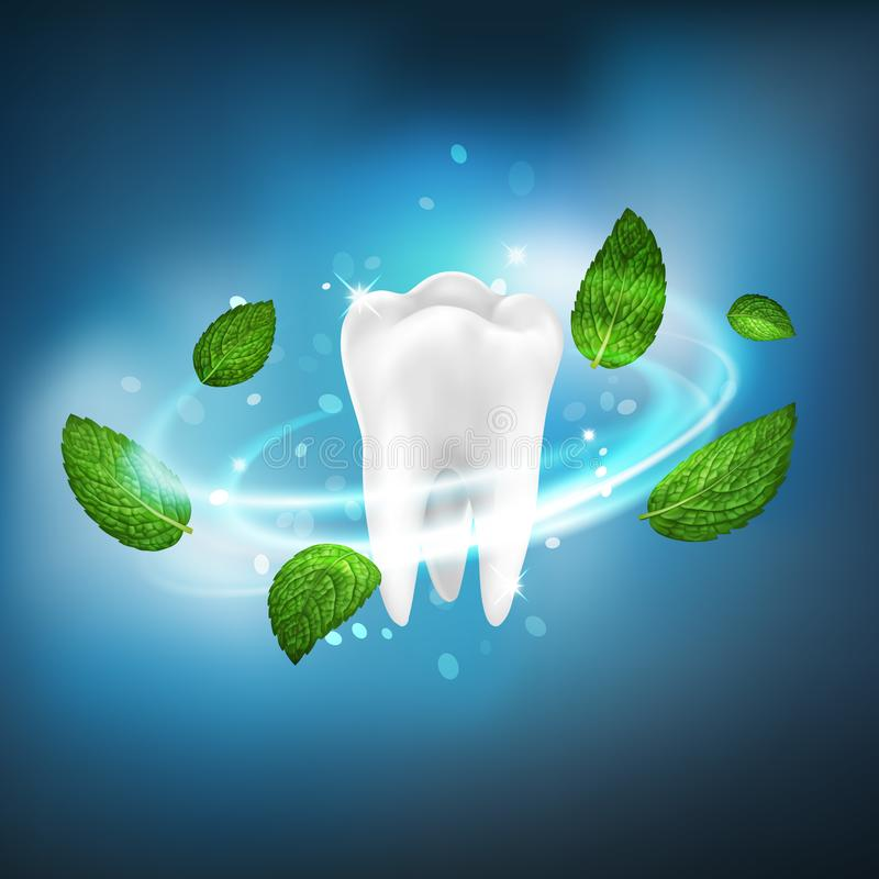 3D realistic isolated vector vortex of mint leaves around a white tooth stock illustration
