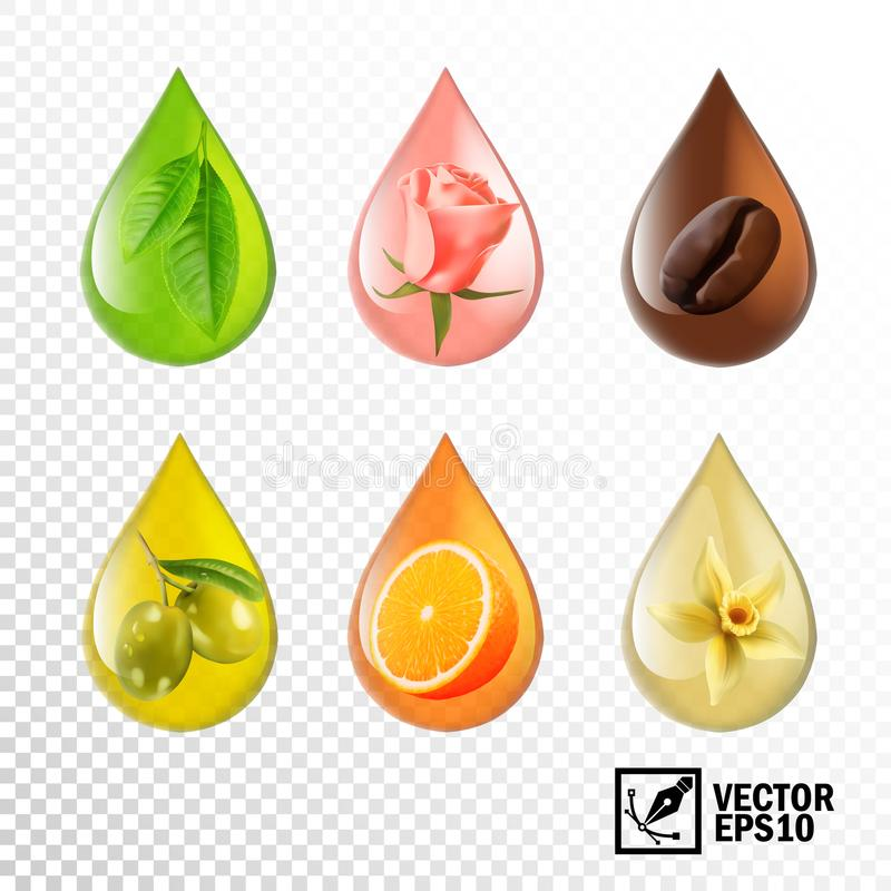 3d realistic vector transparent drops oil with taste and aroma: tea, rose, coffee, olive, orange, vanilla. Editable handmade mesh.  royalty free illustration