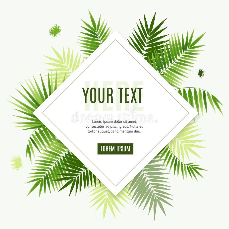 3d realistico ha dettagliato la carta di foglia di palma verde dei manifesti dell'insegna dell'aletta di filatoio della struttura royalty illustrazione gratis