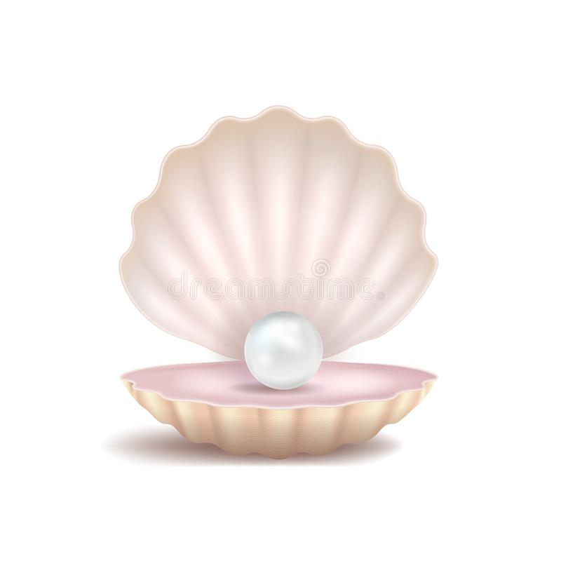 3d realistico ha dettagliato la perla e Shell Vettore illustrazione di stock