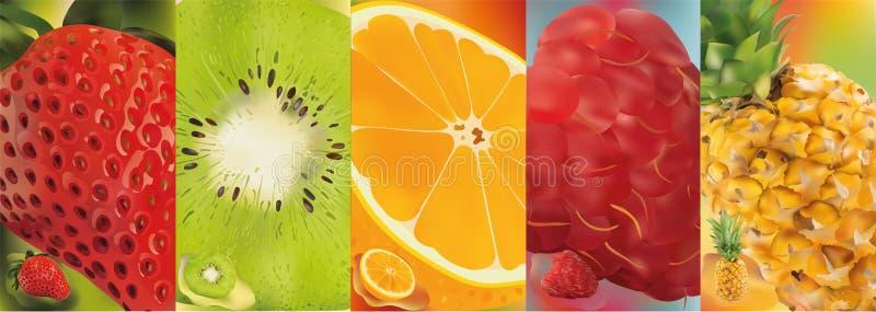 3d realistisch fruit, ananas, framboos, kiwi, aardbei, sinaasappel Vector grafiek Een reeks van fruit royalty-vrije illustratie