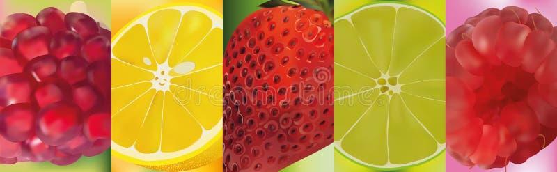 3d realistisch fruit, granaatappel, citroen, kalk, aardbei, framboos Vector grafiek Een reeks vruchten royalty-vrije illustratie