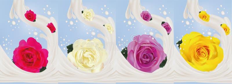 3d realistisch nam met melkplonsen toe Mooie geel, purper, wit en roze rozen Vector illustratie Bespatte melk royalty-vrije illustratie