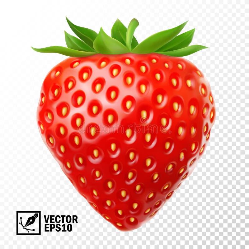 3D realistische geïsoleerde vectoraardbei, editable met de hand gemaakt netwerk vector illustratie