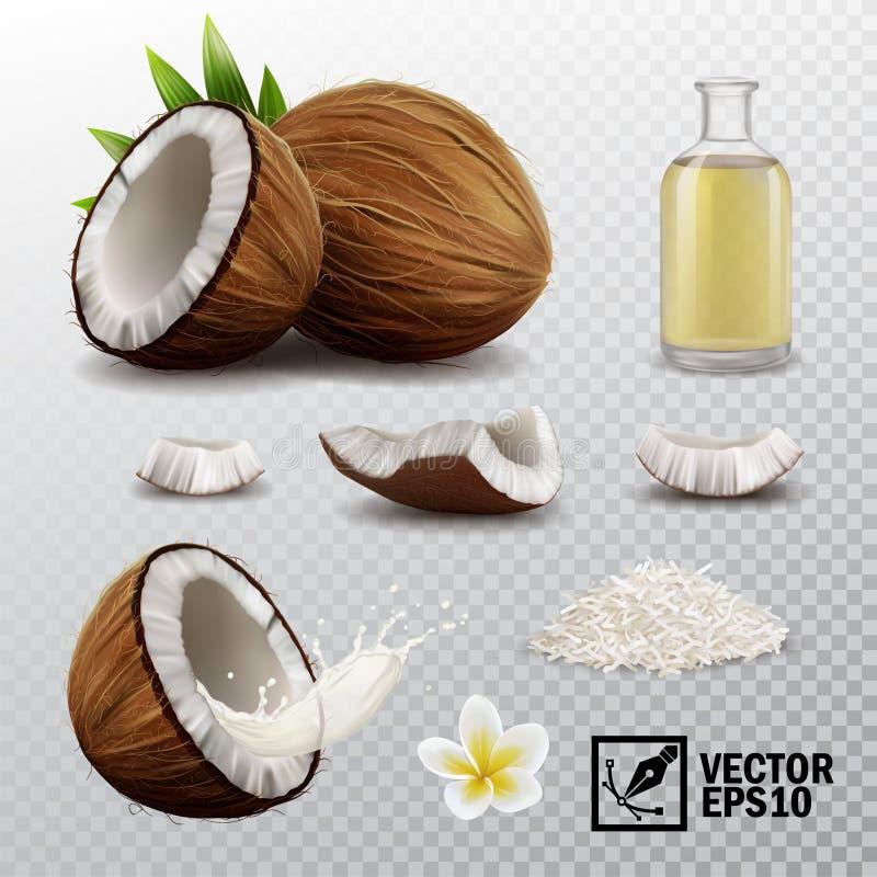3d realistische vectorreeks van elementen gehele kokosnoot, halve kokosnoot, kokosnotenspaanders, plonskokosmelk of olie, kokosno stock illustratie