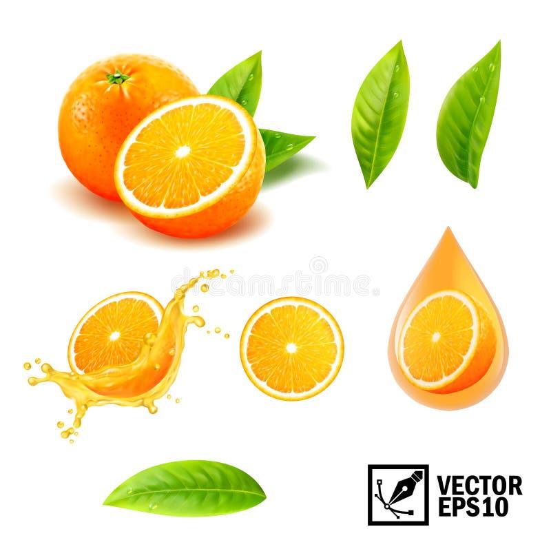 3d realistyczny wektorowy ustawiający element cała pomarańcze, pokrojona pomarańcze, pluśnięcie sok pomarańczowy, opadowy pomarań royalty ilustracja