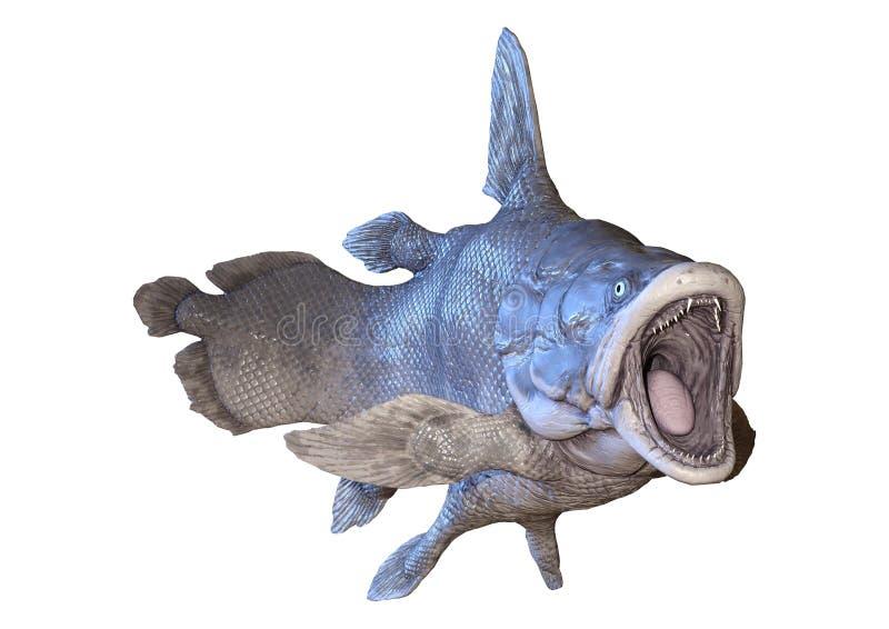 3D rendant des poissons de Mawsonia sur le blanc illustration stock