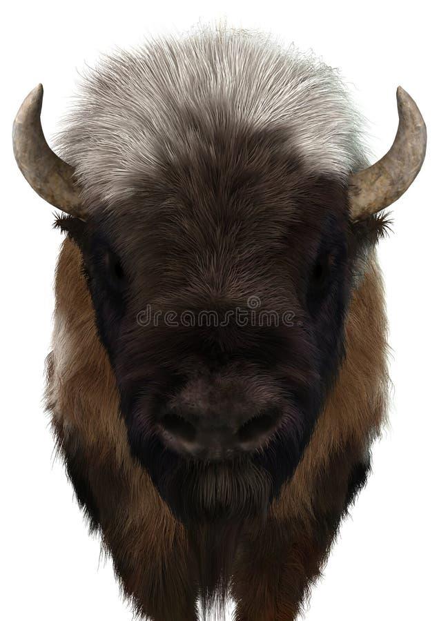 3D rendant le bison américain sur le blanc illustration de vecteur