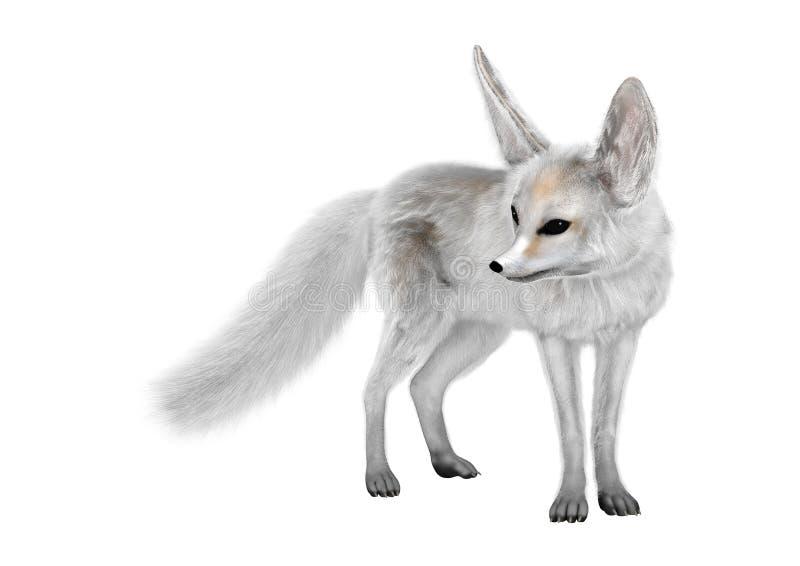 3D rendant le Fox de Fennec sur le blanc photos stock