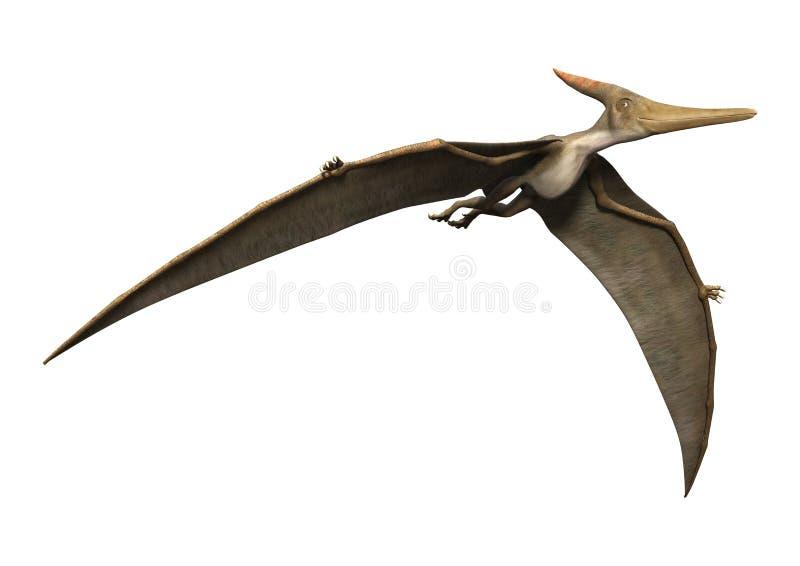 3D rendant Pteranodon sur le blanc illustration de vecteur