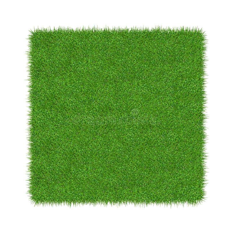 3D rendem da grama verde Fundo natural da textura Grama verde da mola fresca Isolado no fundo branco ilustração stock