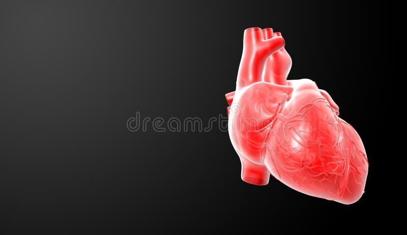 3d rendem o coração vermelho ilustração do vetor
