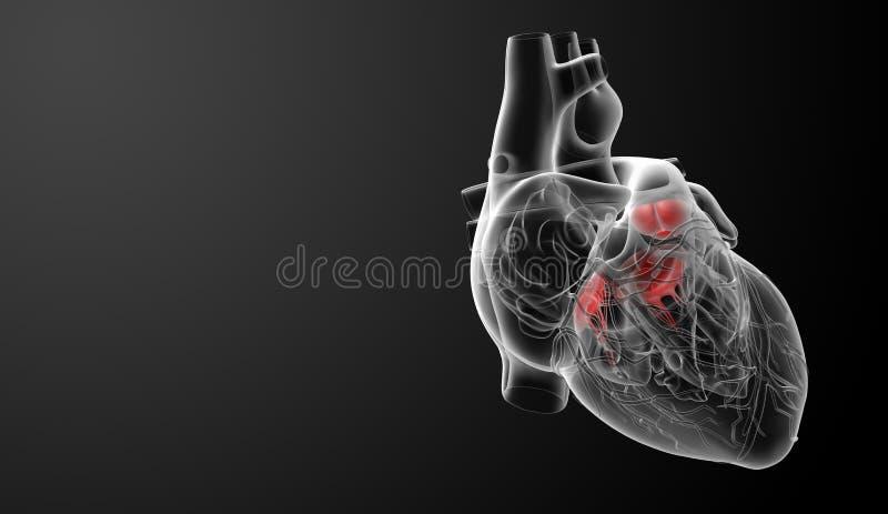 3d rendem a válvula de coração ilustração stock