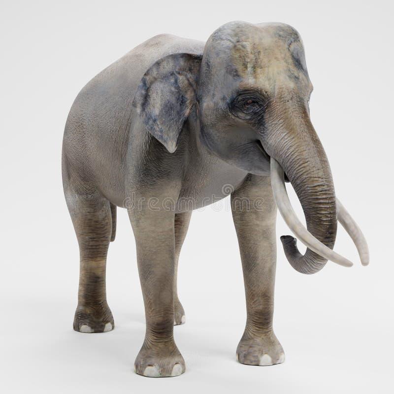 3D rendent de l'éléphant asiatique - mâle illustration de vecteur