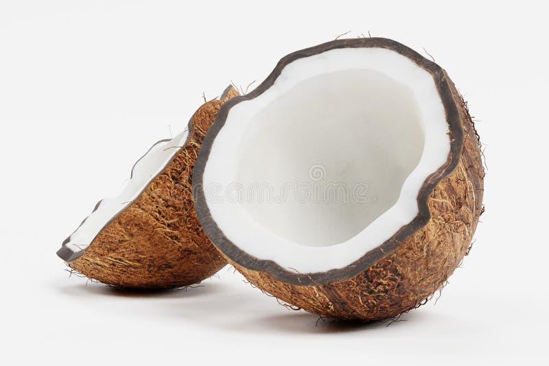 3d rendent de la noix de coco illustration de vecteur