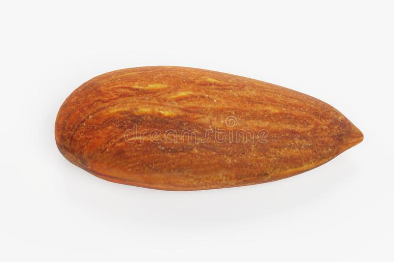 3D Render of Almond. Realistic 3D Render of Almond vector illustration