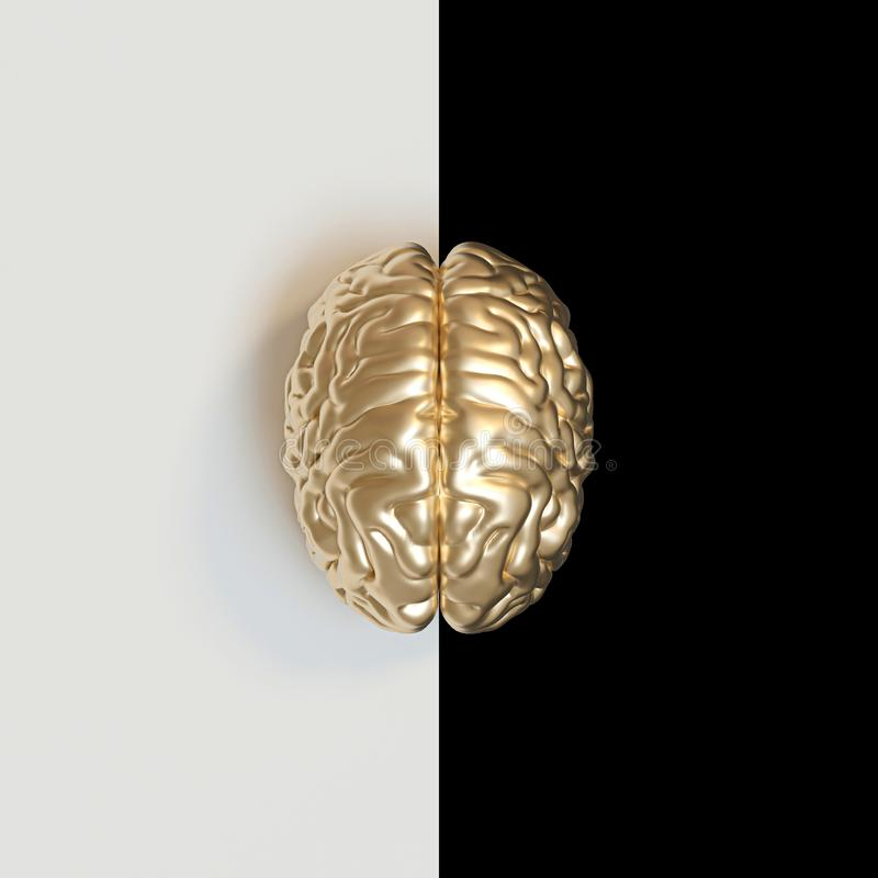 3d render image of a gold-colored human brain on a white and black vector illustration