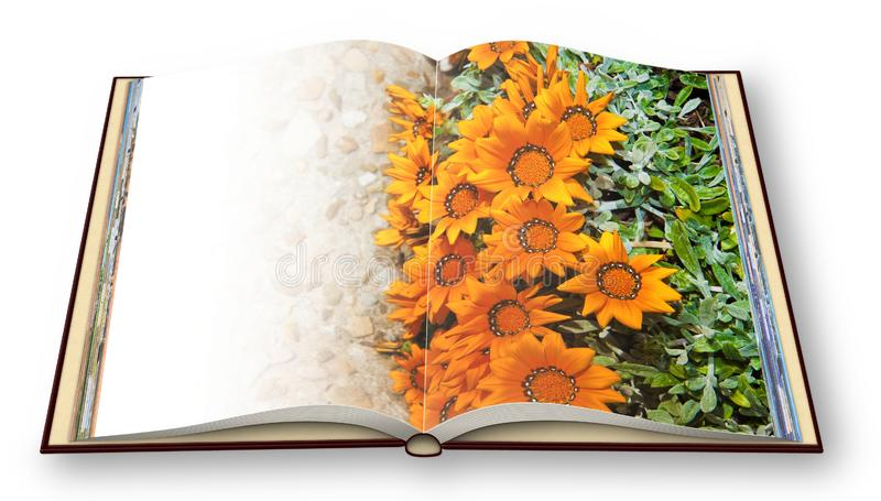 3D render of an opened photo book with flowerbed finely cured wi stock image