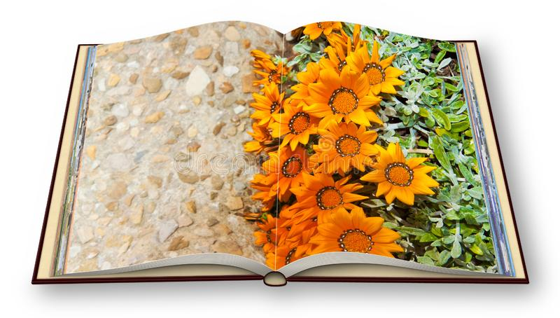 3D render of an opened photo book with flowerbed finely cured wi stock illustration