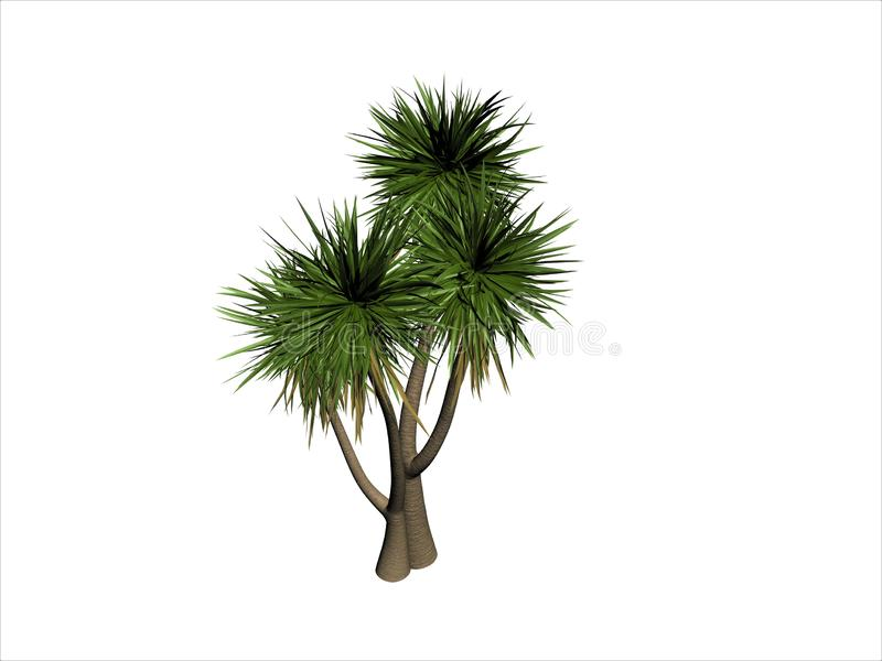 3d render of palm tree vector illustration