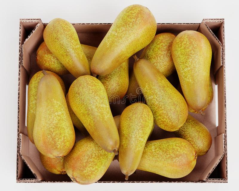 3D Render of Pears in Box stock photos