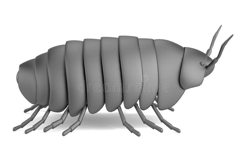 3d render of pillbug. Realistic 3d render of pillbug vector illustration
