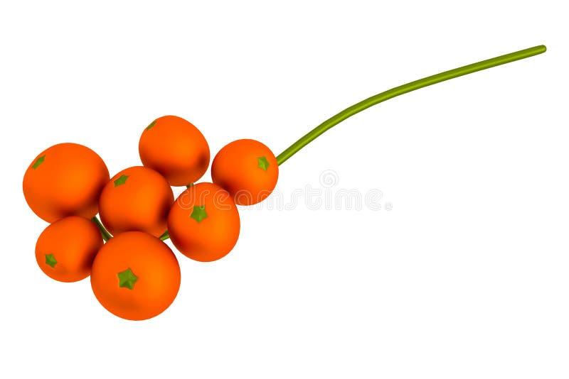 Download 3d render of rowan berry stock illustration. Image of cartoon - 40116669