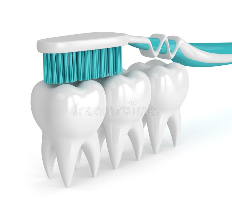 3d render of teeth with toothbrush vector illustration