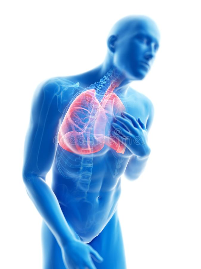 An inflamed lung. 3d rendered illustration of a man having an inflamed lung royalty free illustration