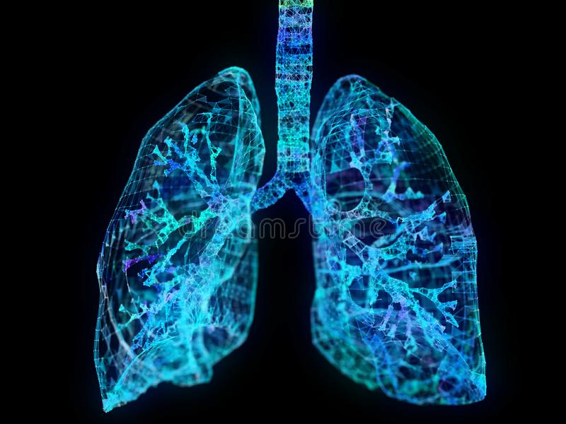 A plexus lung. 3d rendered illustration of a plexus lung vector illustration