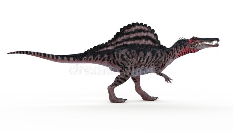 A spinosaurus stock illustration