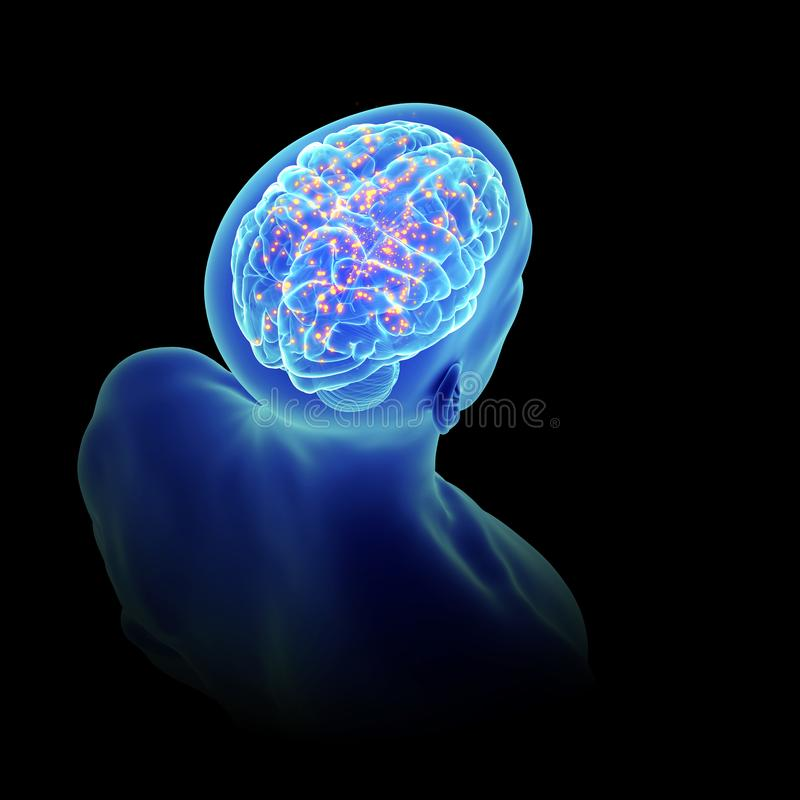 An active brain. 3d rendered, medically accurate illustration of an active brain royalty free illustration