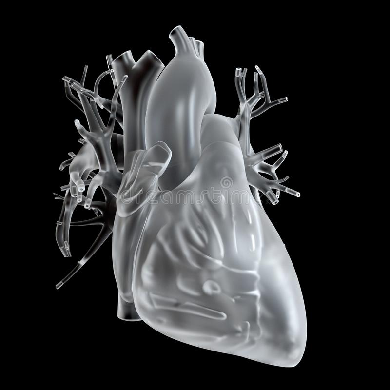 Glass heart. 3d rendered medically accurate illustration of glass heart royalty free illustration