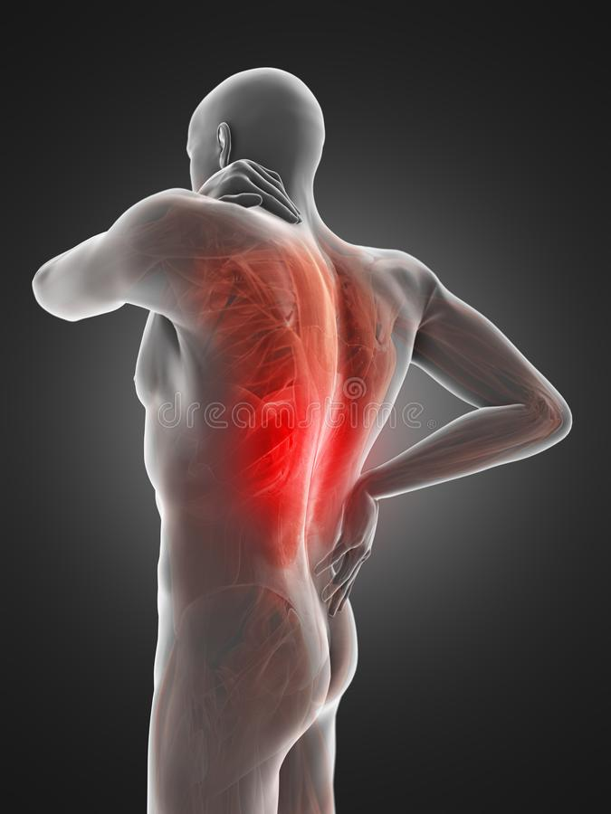 A man having a painful back. 3d rendered medically accurate illustration of a man having a painful back vector illustration