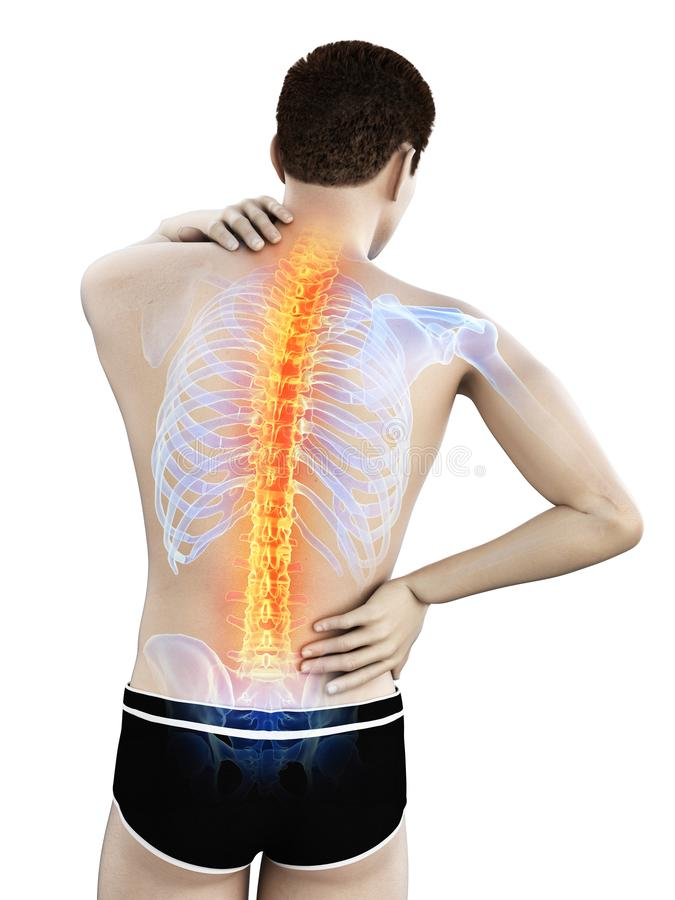 A mans painful back. 3d rendered medically accurate illustration of a mans painful back royalty free illustration