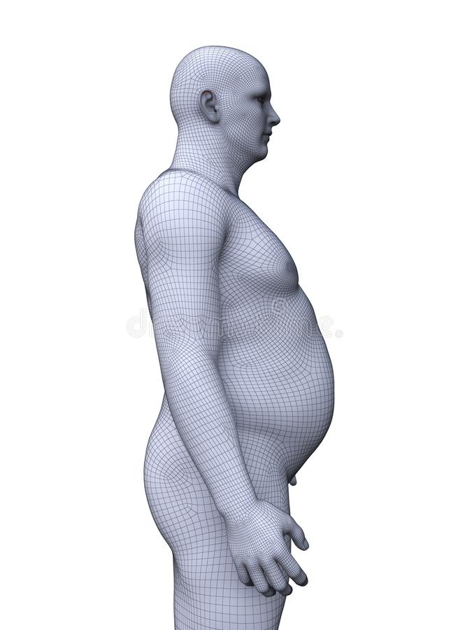 An obese male. 3d rendered medically accurate illustration of an obese male stock illustration