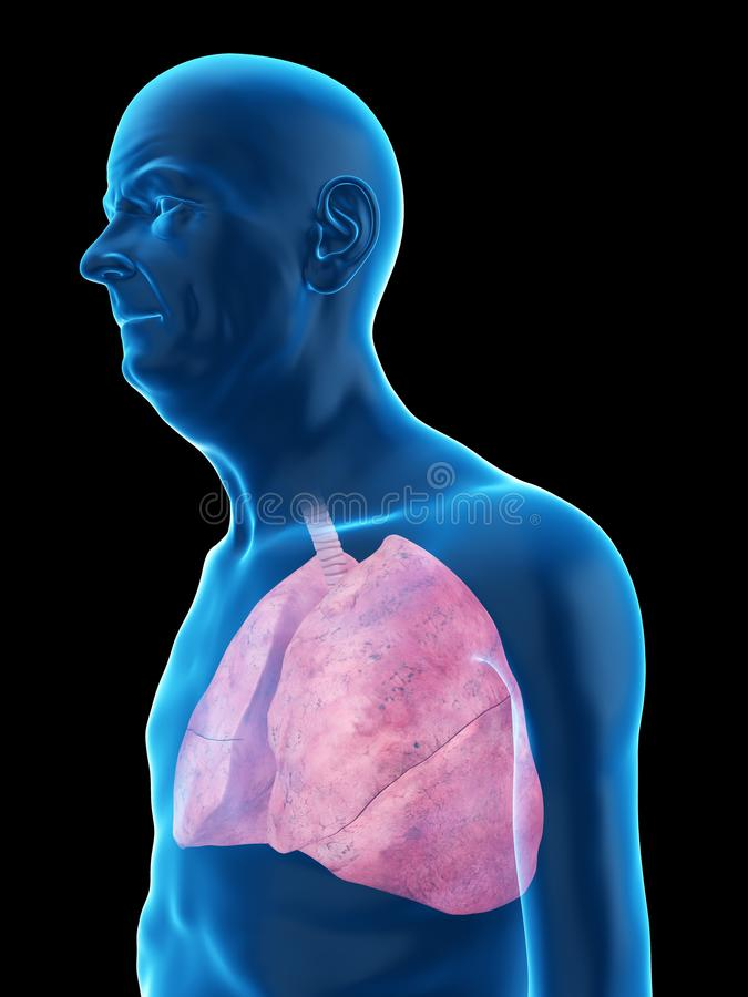 An old mans lung. 3d rendered medically accurate illustration of an old mans lung royalty free illustration