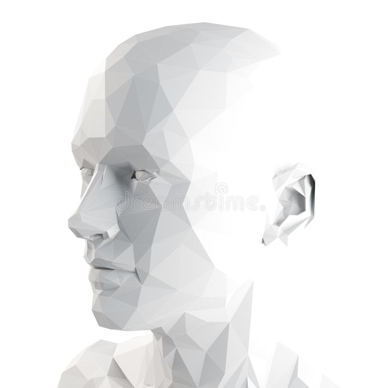 A poly style head. 3d rendered medically accurate illustration of a poly style head vector illustration