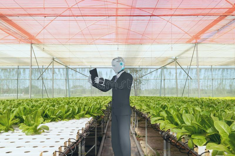 3d rendering ai artificial intelligent robot work in smart farm, agriculture concept, robot work for increase productivity, effici. Ency, speed, time royalty free stock photo