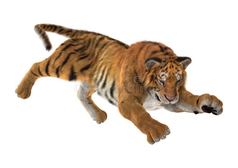 3D Rendering Big Cat Tiger on White stock illustration
