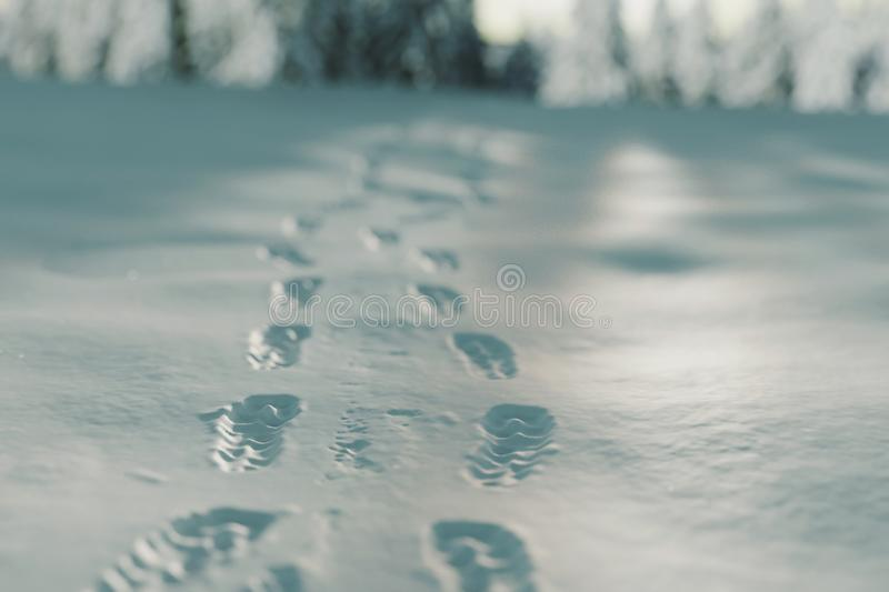 3d rendering of close up of footsteps at winter landscape.  royalty free stock photography