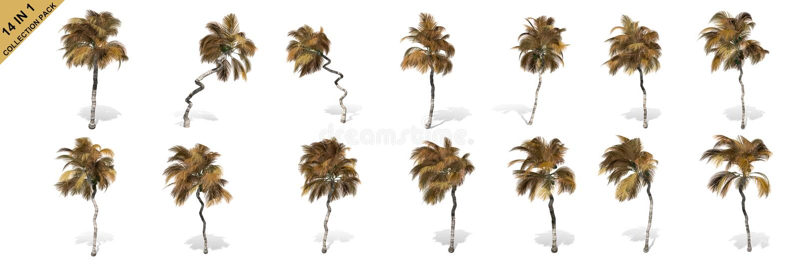 3D rendering - 14 in 1 collection of tall coconut trees isolated over a white background vector illustration