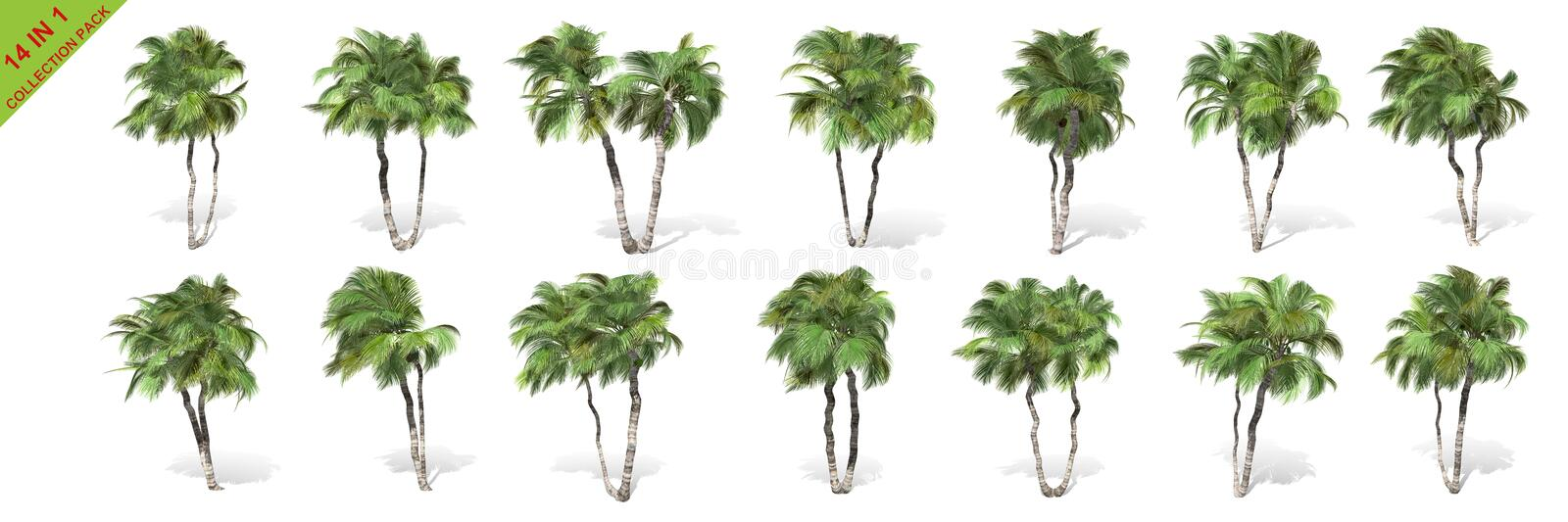 3D rendering - 14 in 1 collection of tall coconut trees isolated over a white background. Use for natural poster or wallpaper design, 3D illustration Design stock illustration