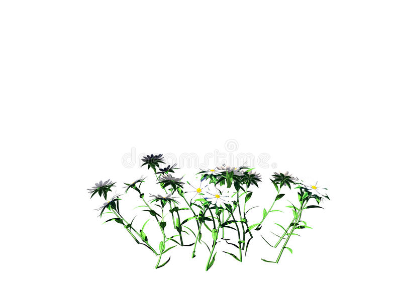 3d rendering of flower bush isolated on white can be used for foreground design royalty free illustration