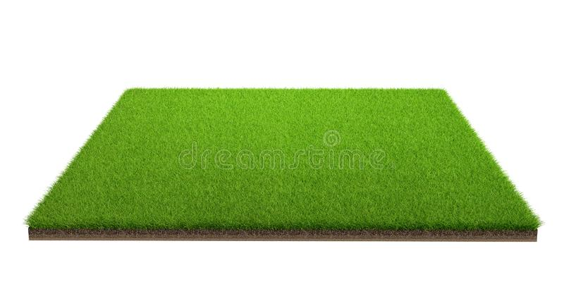 3d rendering of green grass field isolated on a white background with clipping path. Sports field stock photos
