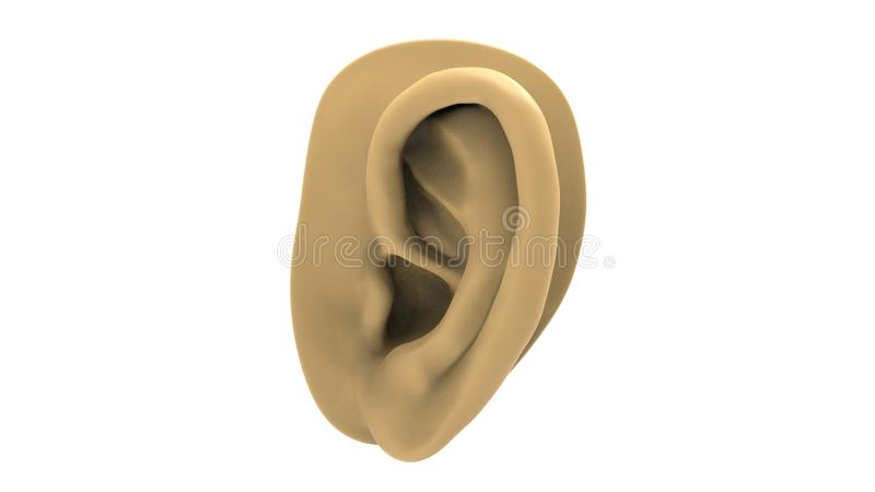 3d rendering of a human ear isolated in white studio background.  vector illustration