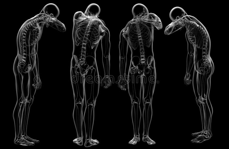 3d rendering of human. 3d rendering illustration of human vector illustration